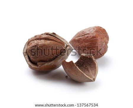 Hazelnut core and nutshell on the white background