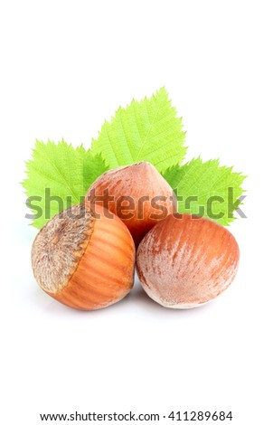 Hazelnut in shell with leaves isolated on white background closeup.