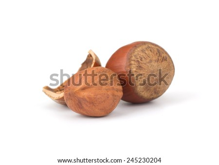 Hazelnut or filbert nut isolated on white background cutout