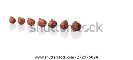 Hazelnut over white background