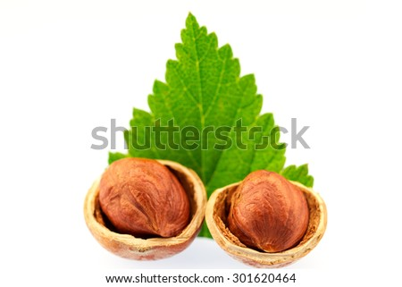hazelnut with green leaves on white background. Healthy vegetarian food