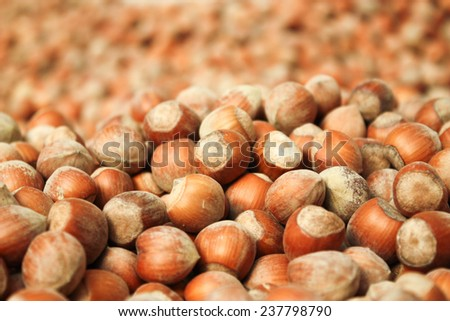 hazelnuts background - stock photo