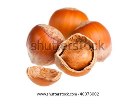 Hazelnuts close up on white background - stock photo