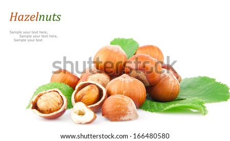 Hazelnuts, filberts in shells and green leaves, food ingredients - stock photo