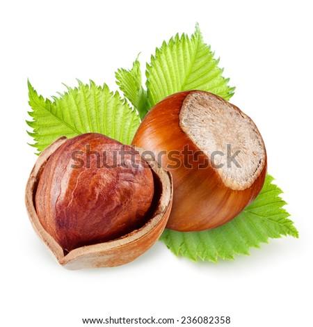 Hazelnuts isolated on a white background. - stock photo