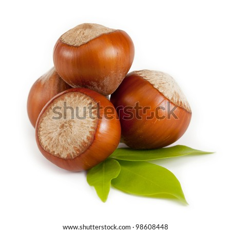 Hazelnuts. isolated on a white background - stock photo