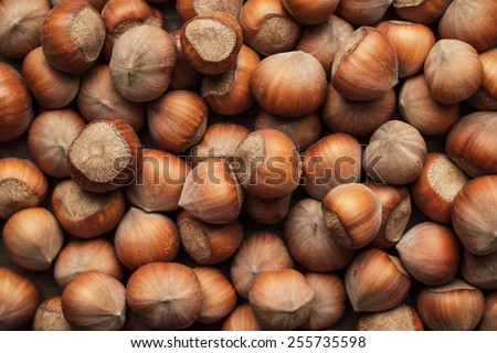 hazelnuts on the brown wooden table background - stock photo