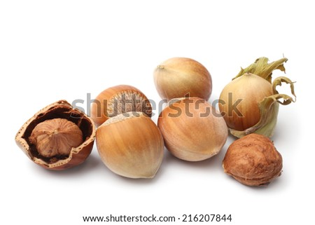 Hazelnuts on white background - stock photo