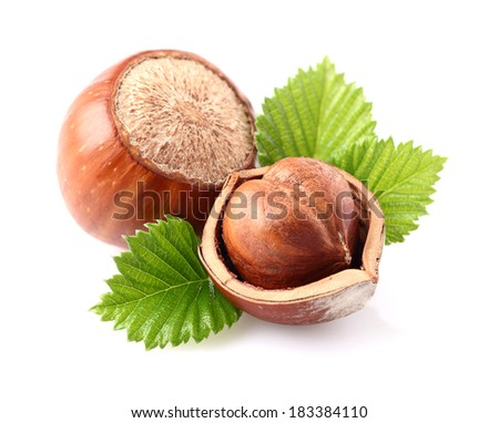 Hazelnuts with leaves - stock photo