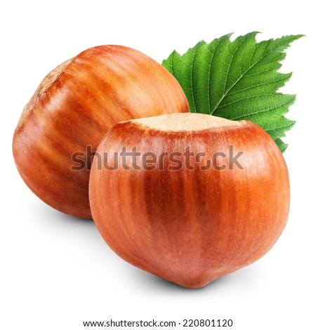 Hazelnuts with leaves isolated Clipping Path - stock photo
