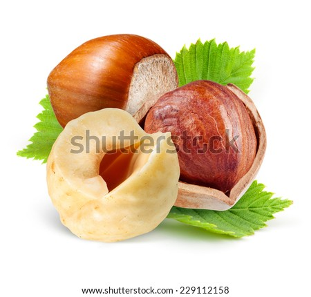 Hazelnuts with leaves isolated on a white background. - stock photo