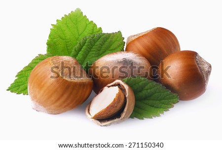 Hazelnuts with leaves on a white background.