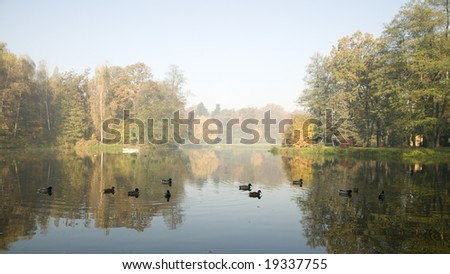 Hazy morning in autumn park - stock photo
