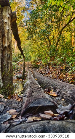 HDR Fall colors in the mountains of Western North Carolina - stock photo