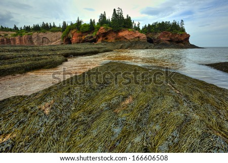 HDR (high dynamic range) image of caves and coastal features at low tide of the Bay of Fundy at St. Martins, New Brunswick, Canada. - stock photo