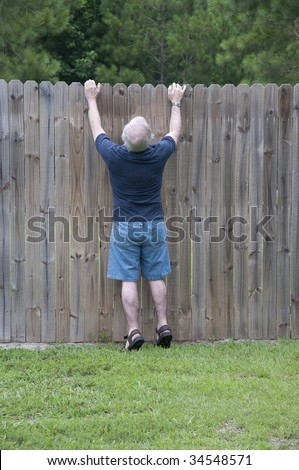 He peeks over the fence to see what the neighbors are up to! - stock photo
