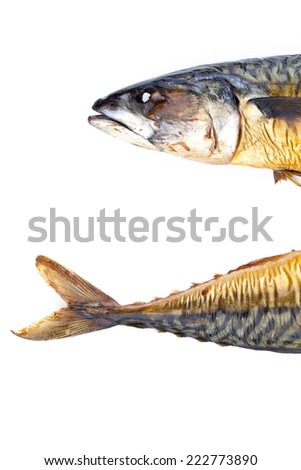Head and tail of mackerel isolated on white background - stock photo