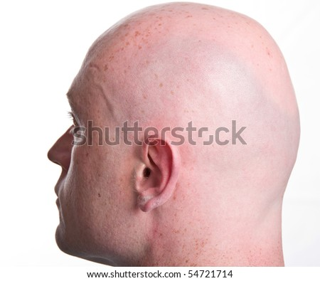 head close man shaved male isolated white backdrop. rear bald shaved close up of man male head. semi rear back of head profile.