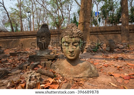 Head of Buddha statue in forest at Wat Umong, Chiang Mai, Thailand - stock photo