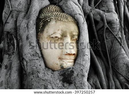 Head of Buddha Statue with the Tree Roots at Wat Mahathat, historic site of Ayutthaya province, Thailand.