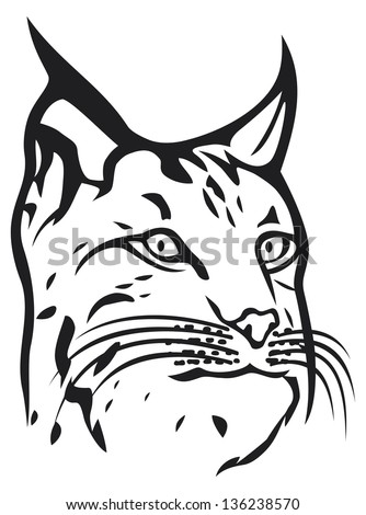 head of lynx (bobcat head) - stock photo