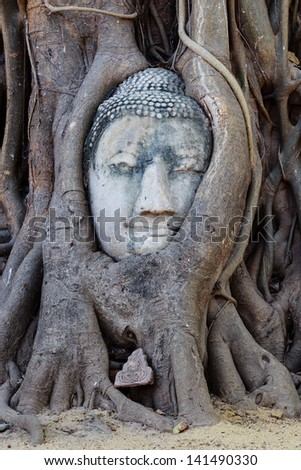 Head of sandstone buddha in tree root at wat mahathat temple, Ayutthaya, Thailand
