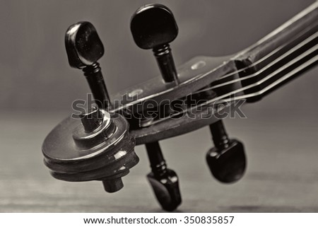 Head of Violin in selective focus in black and white.