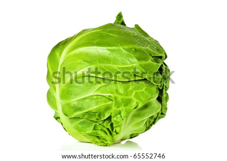 Head of young cabbage, it is isolated on white - stock photo