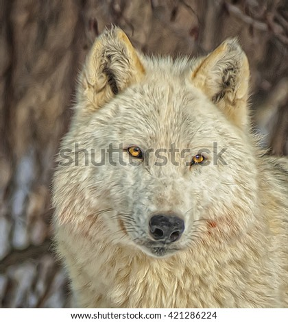 Head shot female gray wolf with bright shining eyes,digital oil painting