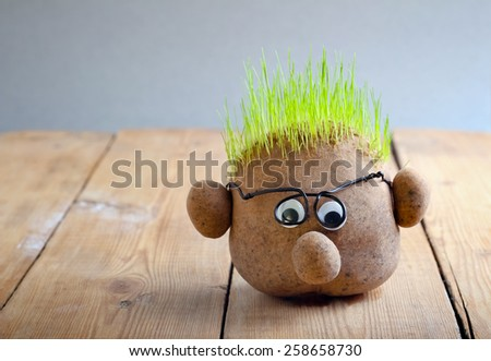 Head with grass on top on wooden table - stock photo