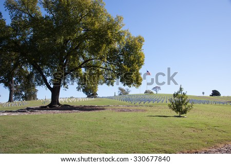 Headstones in a cemetery with trees and shade - stock photo