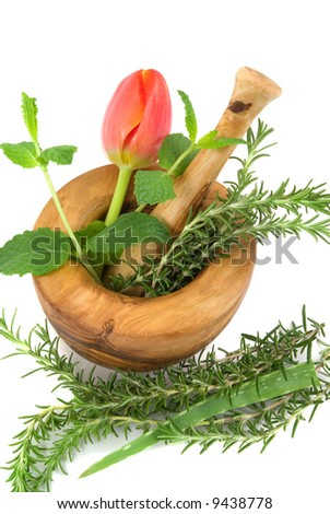 Healing herbs and tulip on white background (hand carved olive tree mortar and pestle)