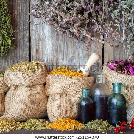 Healing herbs in hessian bags and bottles of essential oil or tincture near rustic wooden wall, herbal medicine. - stock photo