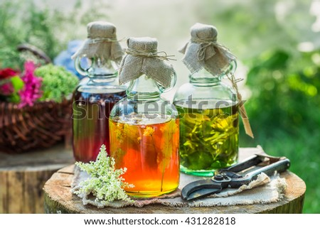 Healing tincture in bottles as natural medicine in garden - stock photo