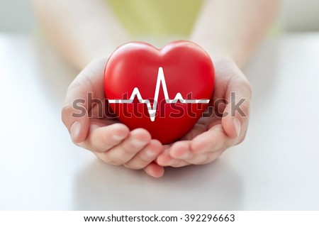 health, medicine, people and cardiology concept - close up of hand with cardiogram on small red heart