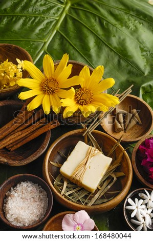Health spa with green leaf  - stock photo