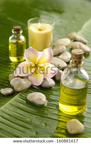 Health spa with massage oil and frangipani,candle on green leaf