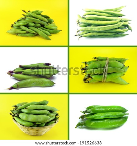 Healthy and organic food, Set of fresh broad bean pods and beans. - stock photo