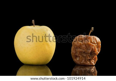 Healthy and rotten yellow apple isolated on black with reflection. - stock photo