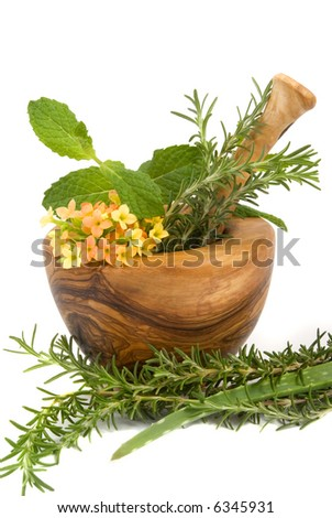 Healthy aromatic herbs in a spa (mint, rosemary, aloe in a carved olive tree mortar and pestle
