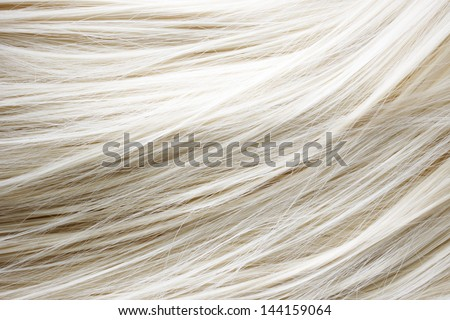 Healthy blonde hair - close up image - stock photo