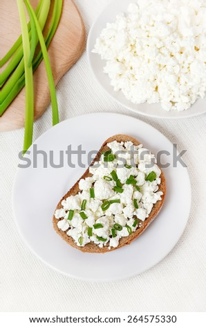 Healthy breakfast sandwich with curd cheese and green onion, top view - stock photo