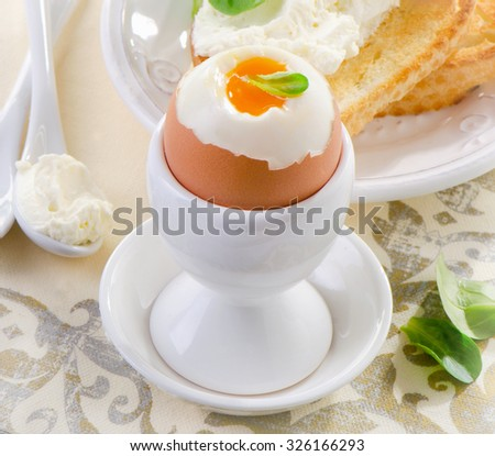 Healthy breakfast - soft boiled egg with toast  and herb - healthy breakfast. Selective focus