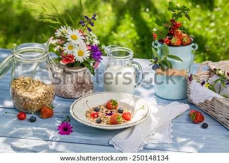 Healthy breakfast with fruit and milk - stock photo