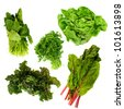 healthy dark green leafy vegetables,kale,spinach,parsley,boston lettuce,red tipped lettuce on a white background - stock photo