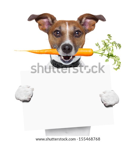 healthy dog with a carrot holding a blank banner - stock photo