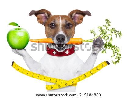 healthy dog  with carrot in mouth and measuring tape around waist isolated on white background and a green apple - stock photo