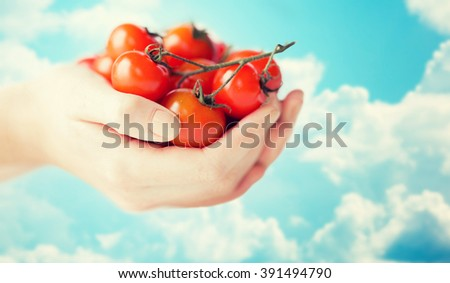 healthy eating, dieting, vegetarian food and people concept - close up of woman hands holding cherry tomatoes bunch over blue sky and clouds background - stock photo