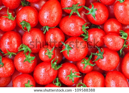 Healthy food, background. Red tomatoes with dew - stock photo