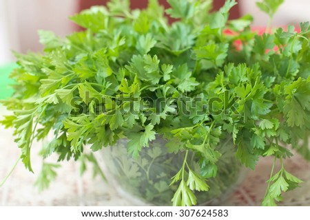 healthy food concept - parsley fresh herb in the glass soup plate